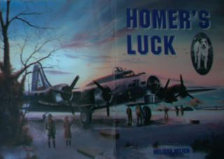 Homers Luck Childrens Book